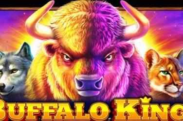 Machine à Sous Buffalo King